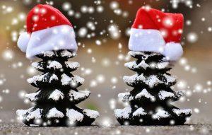 sapins 300x191 - Bonnes fêtes de fin d'année